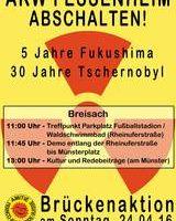 Brückendemo Breisach am 24.4.2016